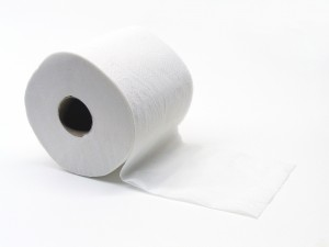 recycle toilet paper rolls