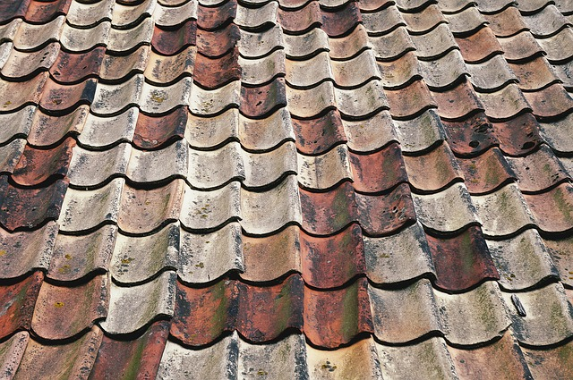 what type of roofing do you need