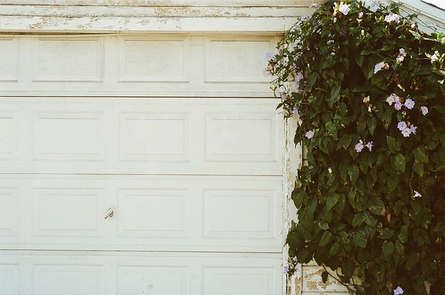 5 Tips to selecting a garage door that will survive in a hot climate