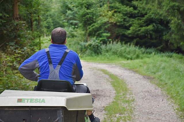 4 Reasons why everyone with a big lawn should buy a ride on mower